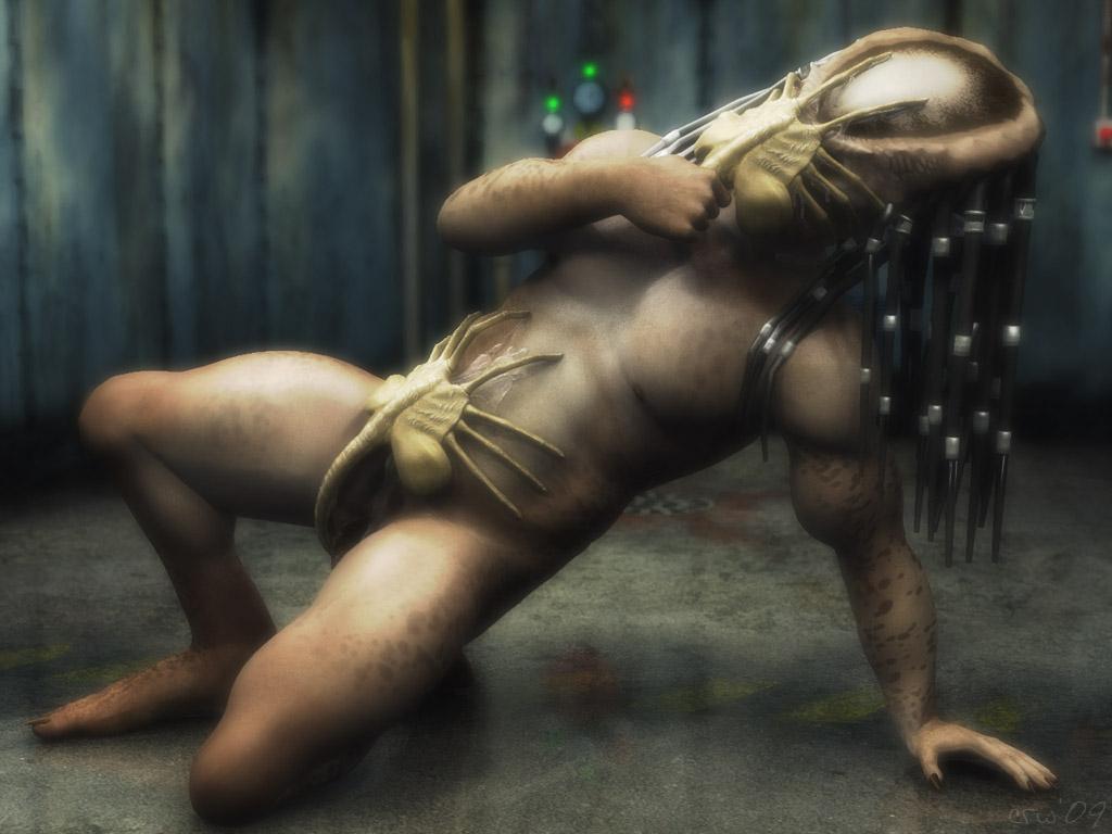 specimen 6 predator vs alien Lady and the tramp 2 angel