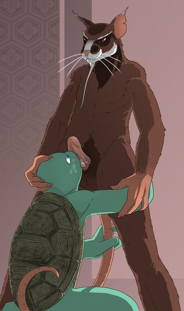 mutant teenage newtralizer ninja turtles Spider man x spider gwen
